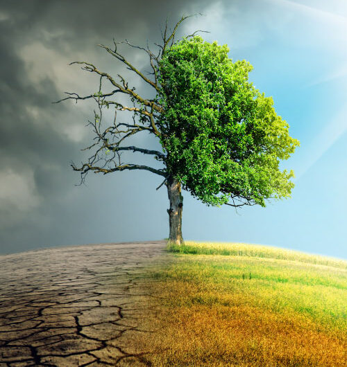 climatechangeprofessionals_aboutus